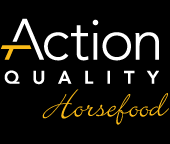 Action Quality Horsefood